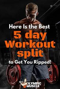 5 Day Workout Routine To Get Ripped  With Images