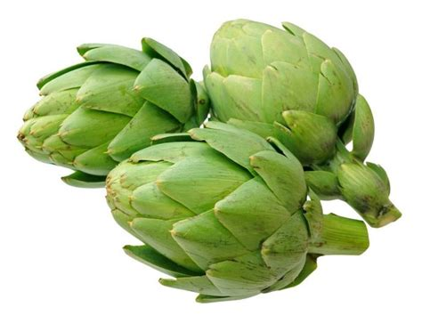 Images Of Artichokes 10 Amazing Benefits Of Artichokes Organic Facts