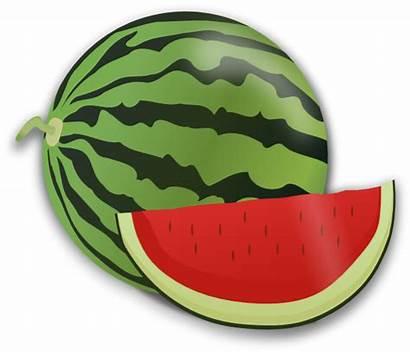 Watermelon Clipart Fruit Slice Watermelons Whole Cut