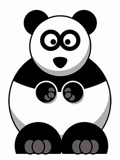 Panda Urso Animais Imagem