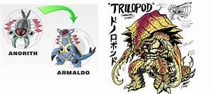 Pokemon Armaldo Evolution Images | Pokemon Images