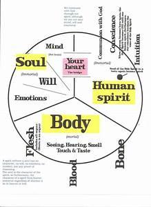 25 Best Body Soul Spirit Images On Pinterest