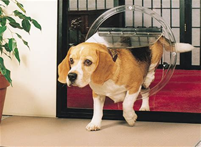 pet doors  jims glass