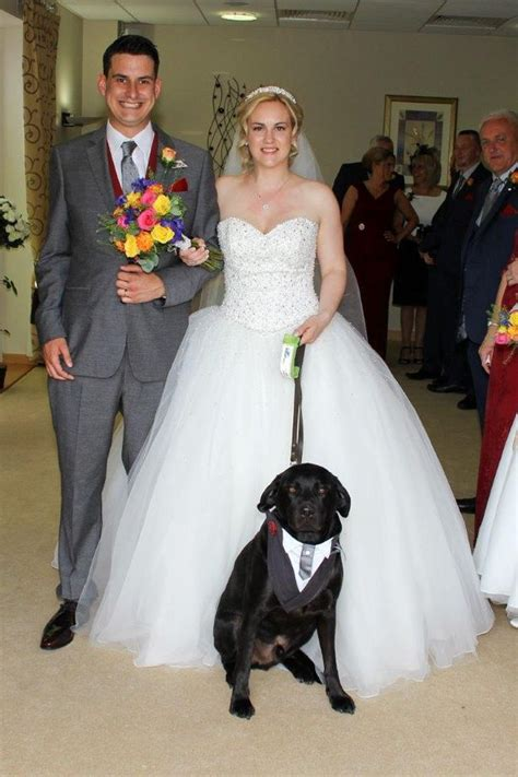 This guide dog was the ring-bearer at his 25-year-old owneru0026#39;s wedding after he u0026#39;gave her her ...