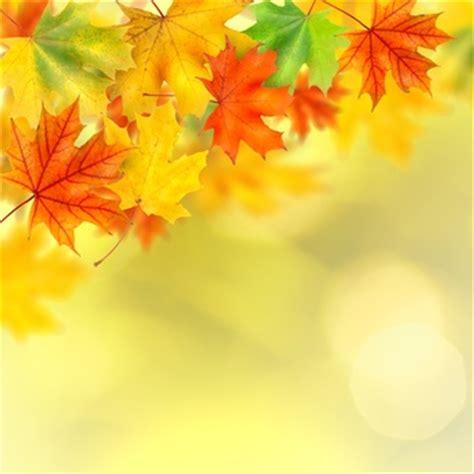 Kostenlose Herbst Desktop Hintergrundbilder Herunterladenservice