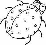 Ladybug Outline Clipart Ladybird Line Coloring Clip Beetle Drawings Template Spotty Lady Cliparts Bird Cute Library Wikiclipart Clipartpanda Sweetclipart Templates sketch template