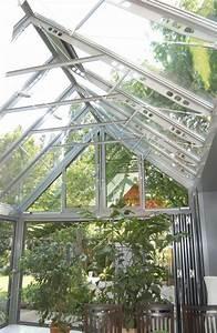 Grosse Kübelpflanzen Sichtschutz : wintergarten pflanzen gestaltung und tipps mein sch ner garten ~ Whattoseeinmadrid.com Haus und Dekorationen