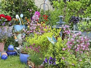 Garten Blumen Pflanzen : sommerblumen welche pflanzen bei schlechtem wetter hilft garten news garten ~ Markanthonyermac.com Haus und Dekorationen