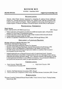 Sample Of Great Resume Patent Attorney With Images Job Resume Examples