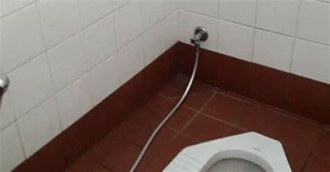 une t 234 te de cochon dans les toilettes d un lieu de culte musulman