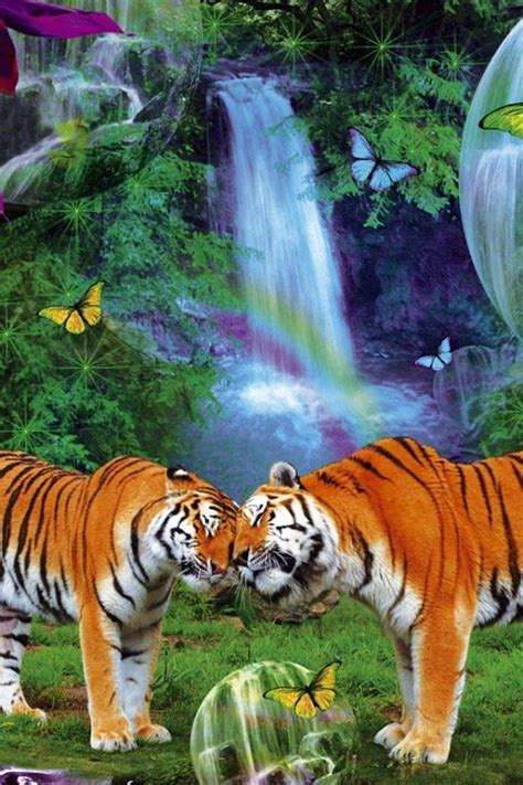 Animal Live Wallpaper - animal live wallpaper gallery