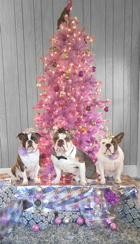 treetopia high quality stylish artificial christmas trees