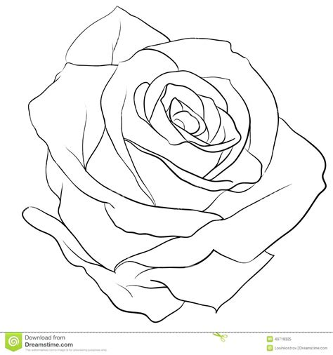 Best Tattoo Outline Designs Ideas And Images On Bing Find What