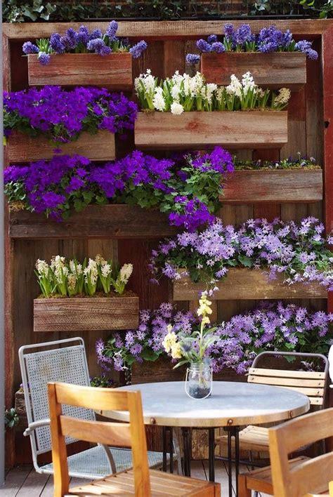 fabriquer  mur vegetal exterieur avec plantes