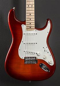 Standard Stratocaster Plus Top  Maple