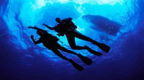 scuba diving wallpapers wallpaper cave