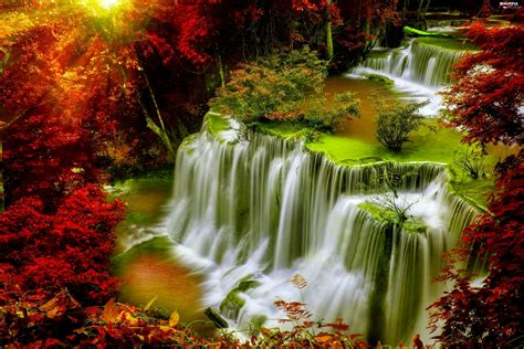 Forest Autumn Waterfall Beautiful Views Wallpapers