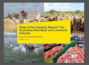 Australia world's largest beef and veal exporter, new ...