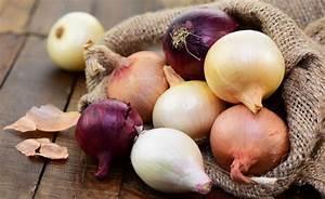 Zwiebeln Anbauen Anleitung : zwiebeln marinieren 4 rezepte zum nachmachen ~ Yasmunasinghe.com Haus und Dekorationen