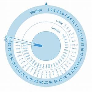 Geburtstermin Ssw Berechnen : schwangerschaftswheel gestogram rechner ~ Themetempest.com Abrechnung