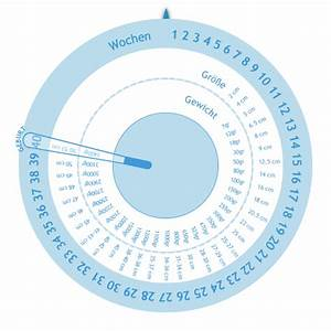 Gehaltserhöhung Berechnen : schwangerschaftswheel gestogram rechner ~ Themetempest.com Abrechnung