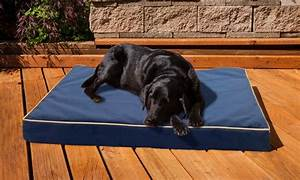 indoor outdoor pet bed groupon goods With weather proof dog bed