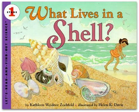 10 best summer and books for preschoolers the 914 | beach books for preschool 9