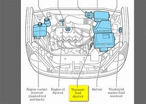 Where Does The Transmission Fluid Go In A 2000 Se Ford Focus