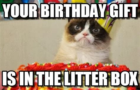 Birthday Meme Grumpy Cat - your birthday gift grumpy cat birthday meme on memegen