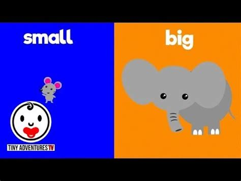 learn opposites big small simple learning video