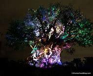 Tree of Life Animal Kingdom at Night
