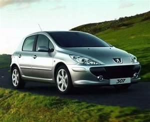 Peugeot 307 Service Repair Manual 2001-2004 Download