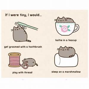 I Am Pusheen The Cat Book - PIQ