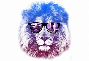 Hipster Lion | www.pixshark.com - Images Galleries With A ...