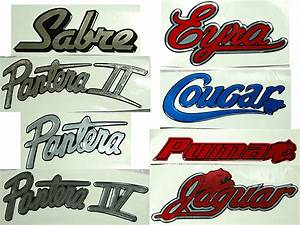domed boat model decal With domed lettering for boats
