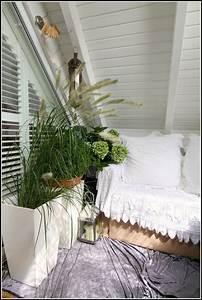 Bambus Auf Balkon : bambus auf balkon berwintern balkon house und dekor galerie 3eroqvawq5 ~ Eleganceandgraceweddings.com Haus und Dekorationen