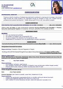 top 10 resume templates