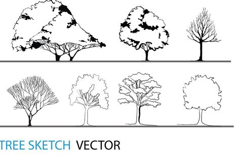 Tree Sketch Vector