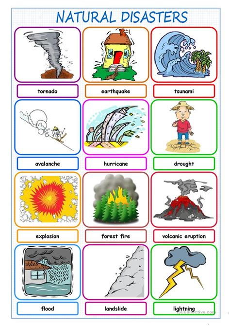 natural disasters picture dictionary worksheet  esl