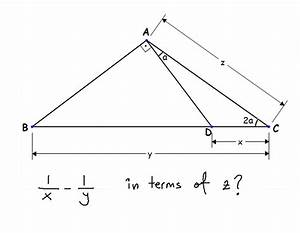 Geometry  Math  Mathematics  Triangle  Angle  Stem  Obl