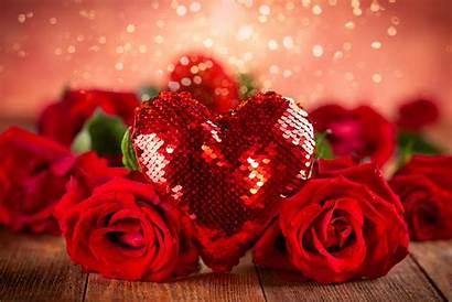 Valentine Rose Roses Heart Flower Background Valentines