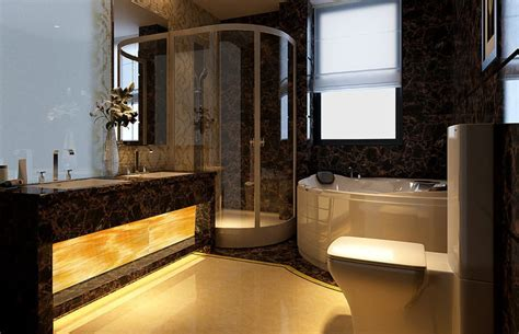 ceiling and lighting design for high end bathroom