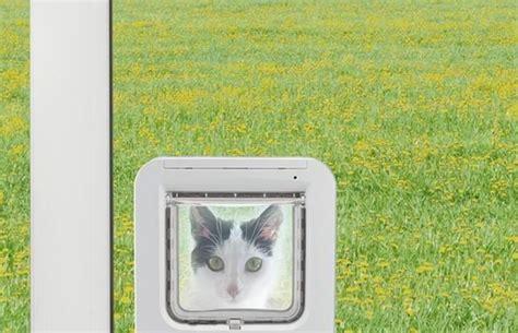 katzenklappe in fenster einbauen kosten katzenklappe fenster 187 katzeneingang manuell elektrisch