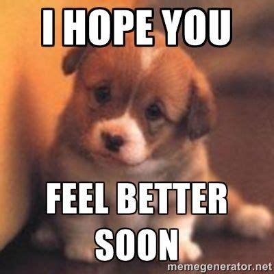 Feel Better Funny Meme - hope you feel better images hope you feel better puppy meme recipes to cook pinterest