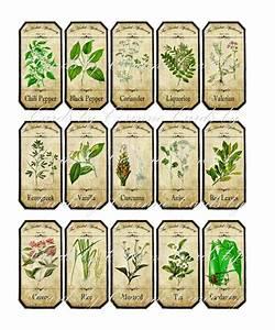 Vintage Inspired Assorted Herb Spice Food Tea Bottle Jar