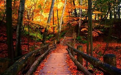 Wisconsin Autumn Forwallpaper Wallpapersafari
