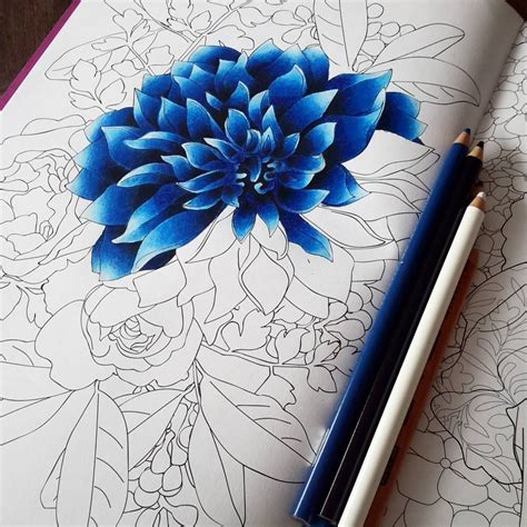 Coloring Flowers With Colored Pencils pin by bethandsteve leslie on coloring in 2019 drawings