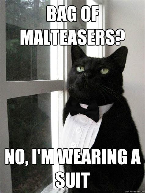 Cat In Suit Meme - bag of malteasers no i m wearing a suit one percent cat quickmeme
