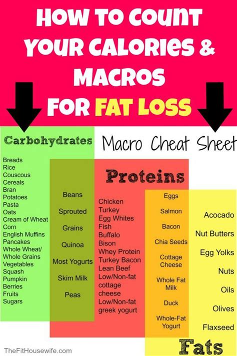 How To Count Calories And Macros For Fat Loss  Fitness  Macros Diet, Help Me Lose Weight, Lose