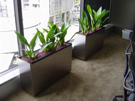 Pots & Planters Choice  Indoor Pots  Outdoor Planters